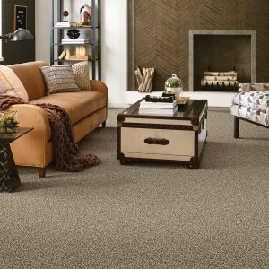Living room Carpet flooring | Flooring Concepts