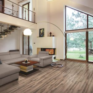 Beautiful view in living room from window | Flooring Concepts