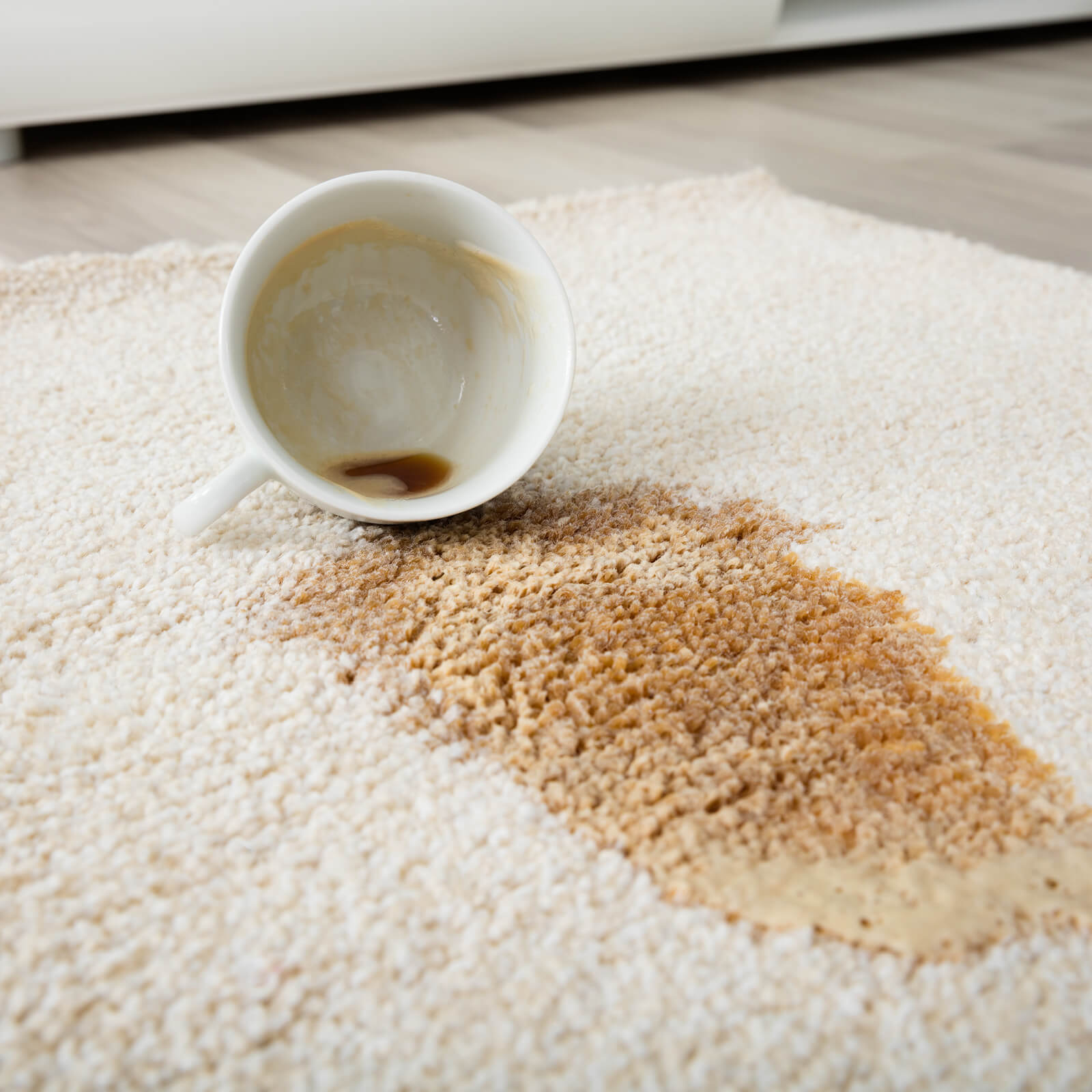 Coffee spill on area rug   Flooring Concepts